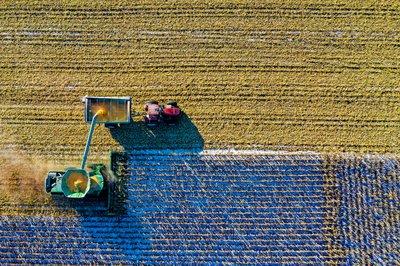 El Consell destina 30.000 euros al desarrollo del emprendimiento rural mediante diversas iniciativas
